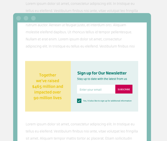 Email Newsletter Signup Website In-line Example